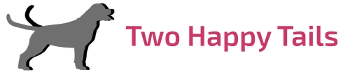 cropped-cropped-WP_logo_500-1.png